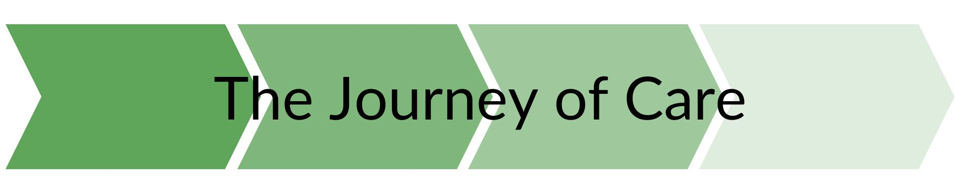 Journey of Care